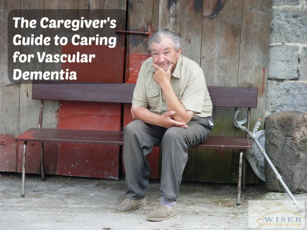 The Caregiver's Guide to Caring for Vascular Dementia