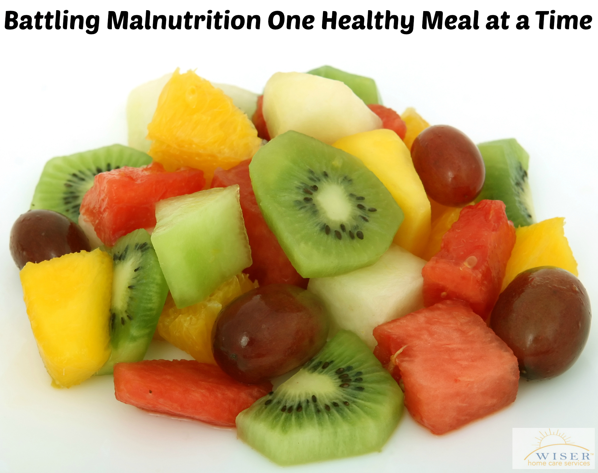 Malnutrition is a critical issue amongst the elderly. In this blog, Wiser Home Care lays out several ideas for meals and snacks to prevent malnutrition.