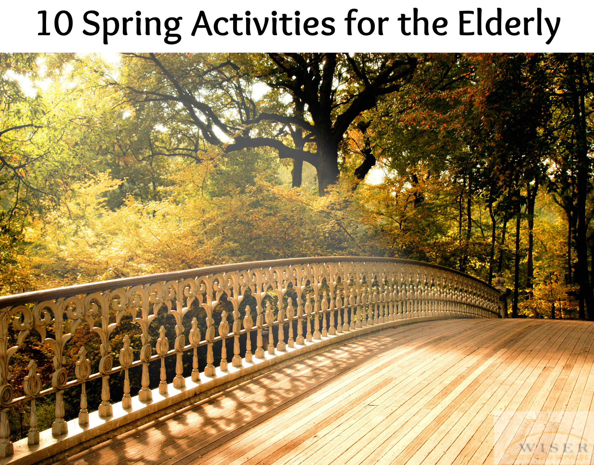 Spring is a great chance to change routines. To help renew your routine, we have compiled a list of fun things you can do with the seniors you care for.