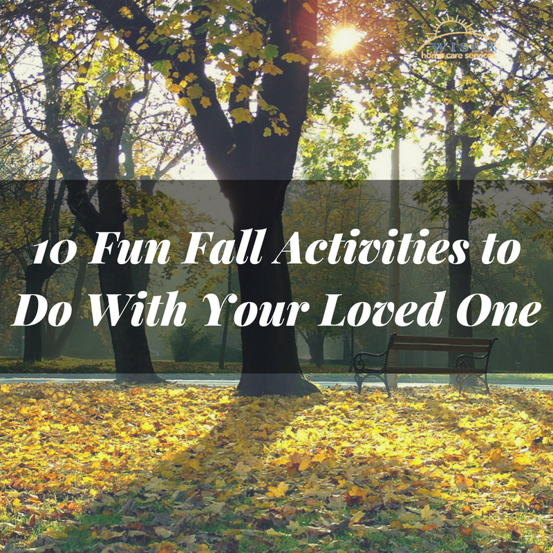 We made it! Fall is officially here. While you unpack your Fall gear, check out our top 10 favorite Fall activities to do this year with your loved one.