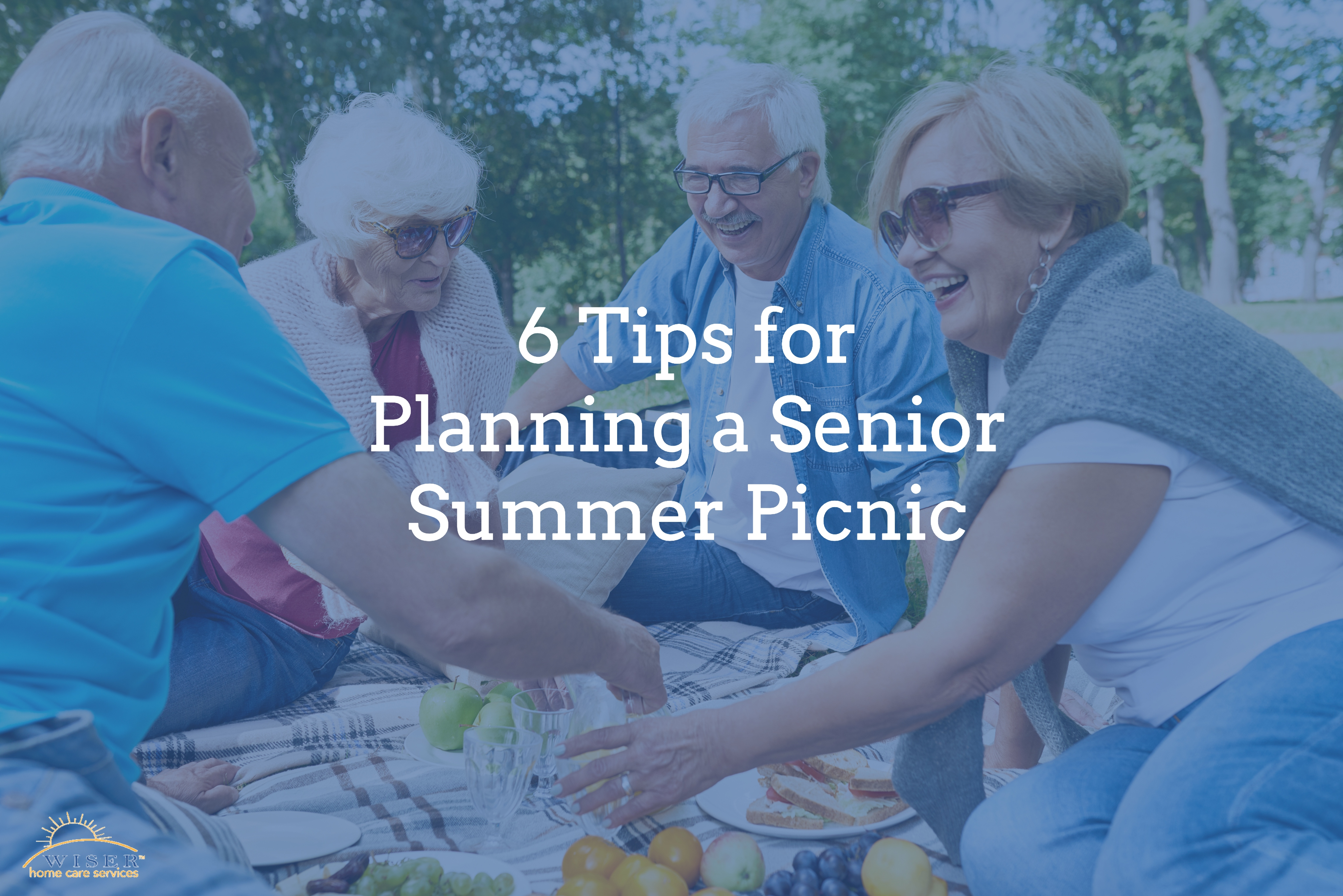6 Tips for Planning a Senior Summer Picnic